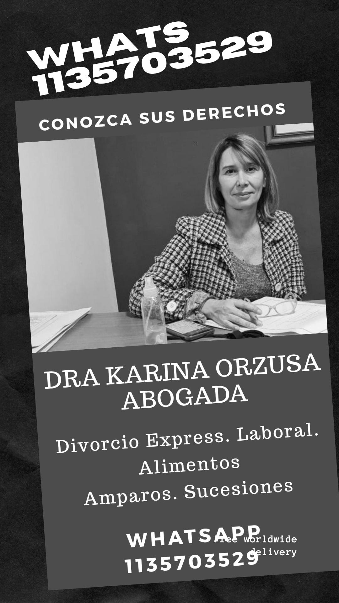 DRA KARINA ORZUSA Abogada especialista en Derecho de Familia, niñez, genero y accidentes de transito, Laboral